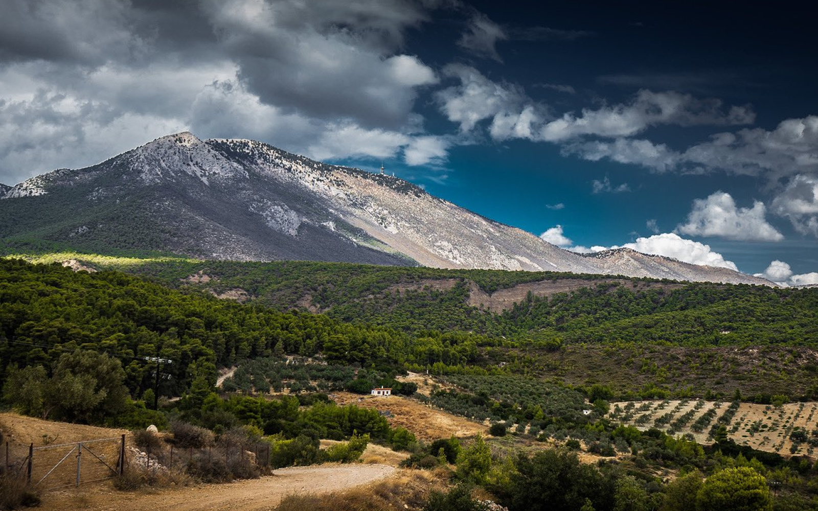 WRC ACROPOLIS RALLY GREECE